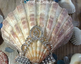 Jeweled Sea Shell Beach Ocean Seaside Nautical Wedding Decor