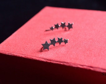 Earrings silver star pin
