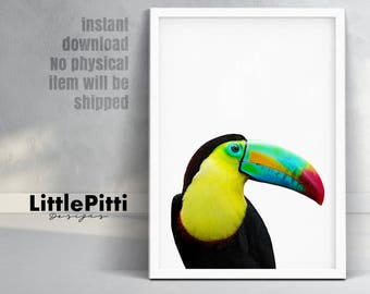 Tropical bird, toucan bird print, black yellow green, tropical wall art, tropical bird photo, rainbow toucan, bright printable, digital art