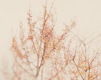 nature photography, tree photo, ginkgo tree print, orange, yellow, winter, branches, minimalist, photograph, dreamy, surreal, modern decor