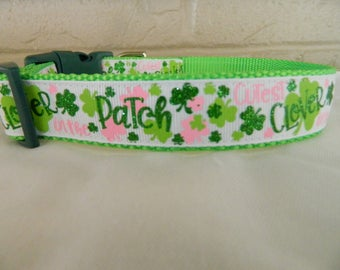 St Patricks Day Cutest Clover in the Patch Dog Collar