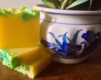 Carnation Creation  - Handcrafted Vegan Bar Soap