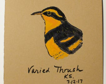 Folk Art Bird Painting - Varied Thrush Painting - Watercolor Painting - Bird Art - Bird Lovers - Folk Art Painting