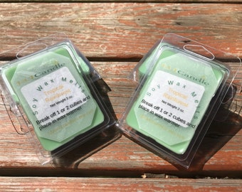 Tropical Rainforest Wax Melts