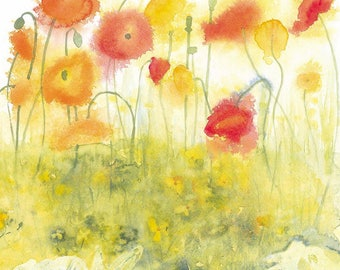 Icelandic Poppies Growing Watercolour Print