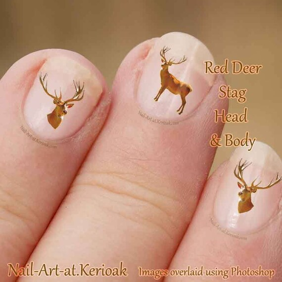 Red Deer Stag Nail Art Wild Animal Stickers Deer Decals