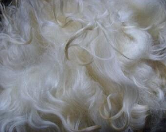 VALAIS BLACKNOSE Fleece - Raw Unwashed / Natural White / British Wool - Rare Breed / 1 kg / 35 oz / Spinning Knitting Felting