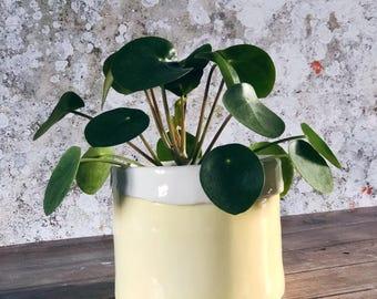 Pale Yellow Planter