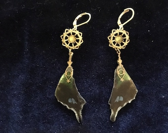 Real butterfly wing antique finding art nouveau drop earrings