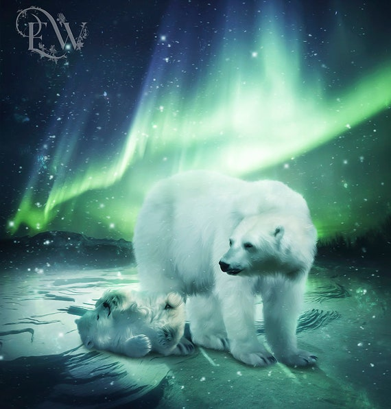 Polar bear baby and mother under the Nothern Lights art print
