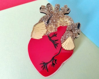 Perspex anatomical heart brooch