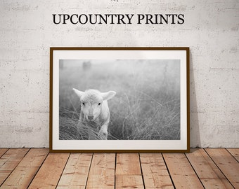 Nursery Print, Nursery Photo, Nursery Decor, Nursery Printable, Lamb Print, Lamb Printable, Farmhouse Decor, Farmhouse Nursery, Sheep Print