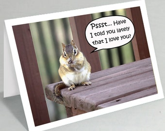 Love notes card - Psst... Have I told you lately that I love you - Chipmunk card - Cute card funny card (Blank inside)