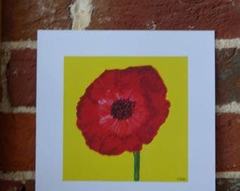 Red Poppy on yellow - 20cm x 20cm print