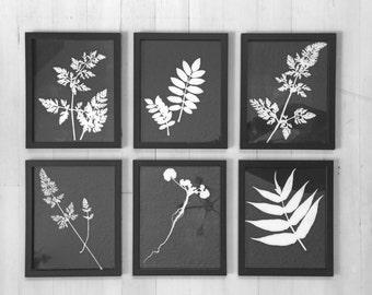 Original Botanical Prints, Set of 6 Framed, Hand pressed botanical, real botanicals, black wall art, black botanical set, botanical decor