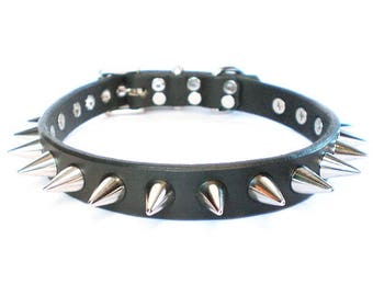 """3/4"""" Black Chahin Latigo Leather Spiked Dog Collar with small cone shaped spikes"""