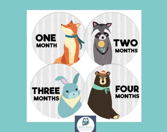 INSTANT DOWNLOAD Monthly Baby Stickers, Woodland Animals, Baby Monthly Sticker, Milestone Stickers Unisex, Printable Digital PDF Download