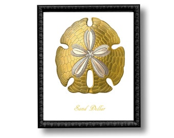 Sand Dollar Gold Nautical Art Print Natural History Beach House Decor Golden White