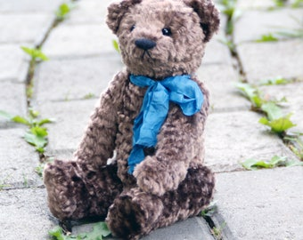 Charly Teddy bear 8.6 inches OOAK, plush