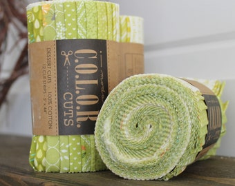 Color Cuts by Moda ~ Sprouts ~ Dessert Roll