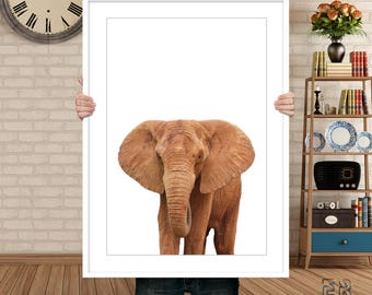 Elephant Print, Elephant Art, African Art, African Animal, Safari Animal, Elephant Wall Art, Elephant Photo, Animal Print