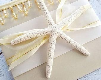 Cabo Beads Destination Luxe Starfish Champagne Pocketfold Invitation Suite