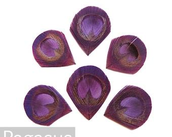 Wine Grape Purple Trimmed Peacock Feather Eyes (6 Piece,2 size option) hat millinery,wedding invitations,hair fascinators, earrings