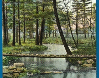 Vintage Postcard -   The Brook Near Marshall's Corner in Brockton, Massachusetts  (2251)