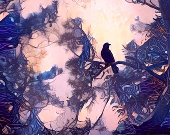 ATC ACEO Welcome Dawn! blue crow raven bird Art Card