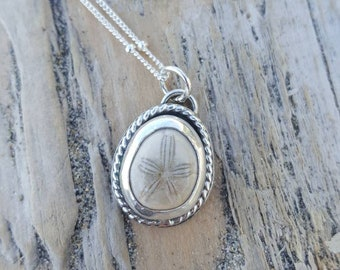 Fossil sand dollar pendant necklace