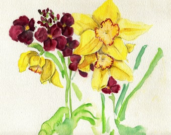 Daffodils and Wallflowers