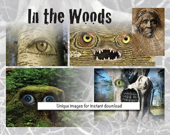 Digital images-In the Woods