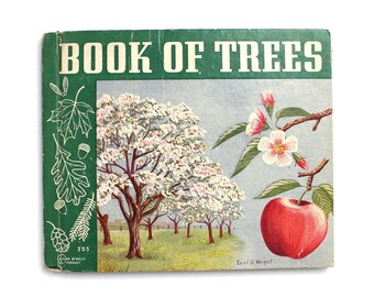 1939  Book of Trees Vintage Childrens Hardcover Book Kids Educational by Lewis H Mills
