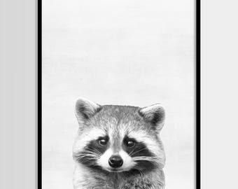 Raccoon print, Nursery decor, Animal print, Woodlands Wall Art, Digital art, Printable, Digital poster Instant Download 8x10, 11x14, 16x20