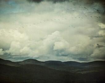 """Nature Photography, Landscape Print, Mountain Art Print, Birds in Flight,  Clouds, Blue Wall Art, Fine Art Print, """"Flight Path"""""""