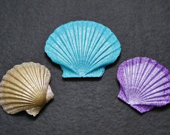 Decoration - real scallop - sea shell - colored - decoration for bathroom