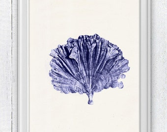 Blue coral no.05 - sea life print - Antique sealife Illustration - Marine  sea life illustration A4 print SWC057