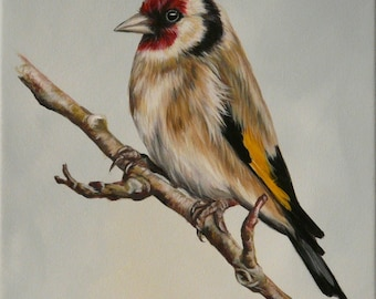 Original canvas by Alison Armstrong - Wildlife / Bird Painting - Goldfinch