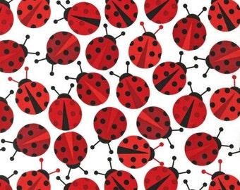 Robert Kaufman - Urban Zoologie Ladybird patchwork quilting fabric