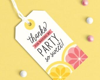 Lemonade Party, Pink Lemonade Party, Pink Lemonade Party Decor, Summer Party Favor Tag, Pink lemonade favor tags, Pink Lemonade Stand, Baby