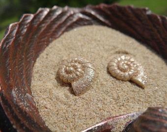 Earring Earrings Studs Stud Nautical Tiny Little Shell Seashell Ammonite Beach Mermaid Pinup Rockabilly I'm really a Im