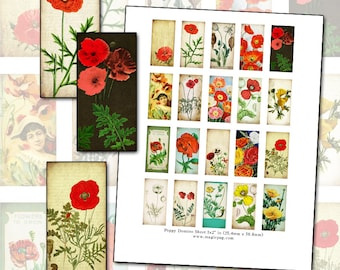 Antique Poppies Floral Domino Digital Collage Sheet 1x2 inch 25mm x 50mm rectangle