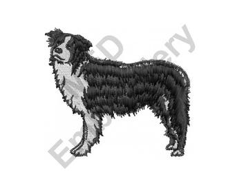 Dog - Machine Embroidery Design, Border Collie