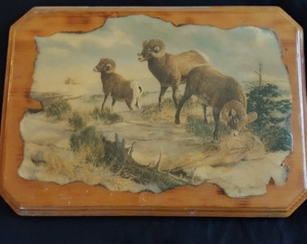 North American Vintage wood Lacquered art