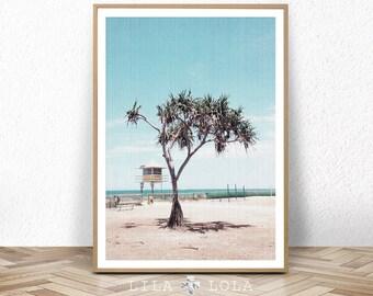 Beach Art Print, Coastal Photography, Large Printable Wall Decor, Palm Tree Photo, Beach Hut Artwork, Digital Download
