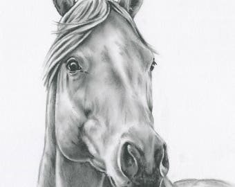 "Horse Art, ORIGINAL Charcoal Horse Drawing, 8""x10"" Horse Sketch, Equine Art, Horse Sketch, Charcoal Drawing, Farm Art, Farmhouse Decor"