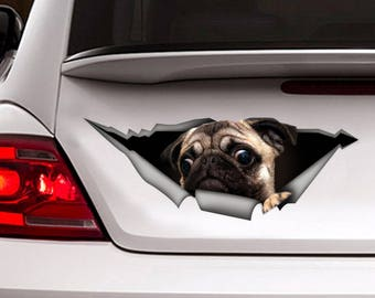 Funny car decal pug, pet decal, pug sticker
