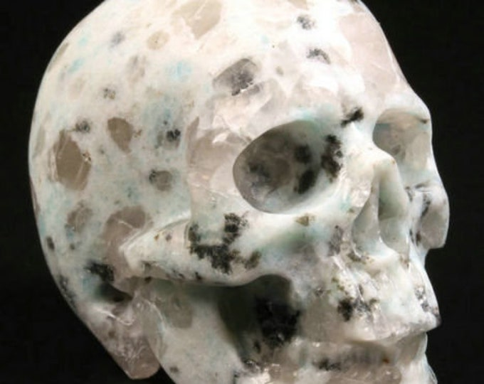 Kiwi Jasper Carved Skull  #075