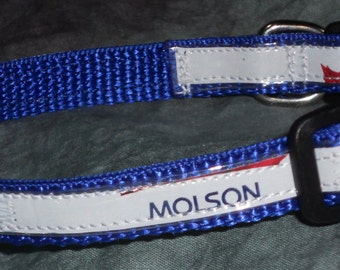 Adjustable Cat or Toy Sized Dog Collar from Recycled Molson Beer Labels