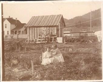 Vintage photo Babies on Farm w Flowers for Fun OR 1900 Albumen